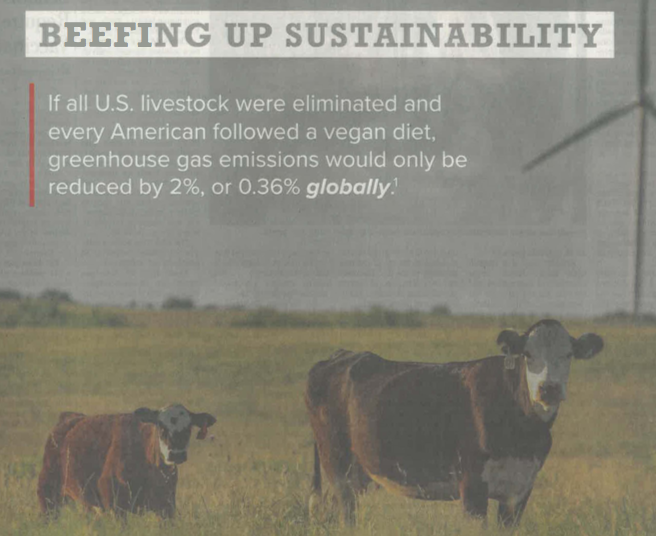 SDGsに潜む「牛悪者論」のすり込みに危惧